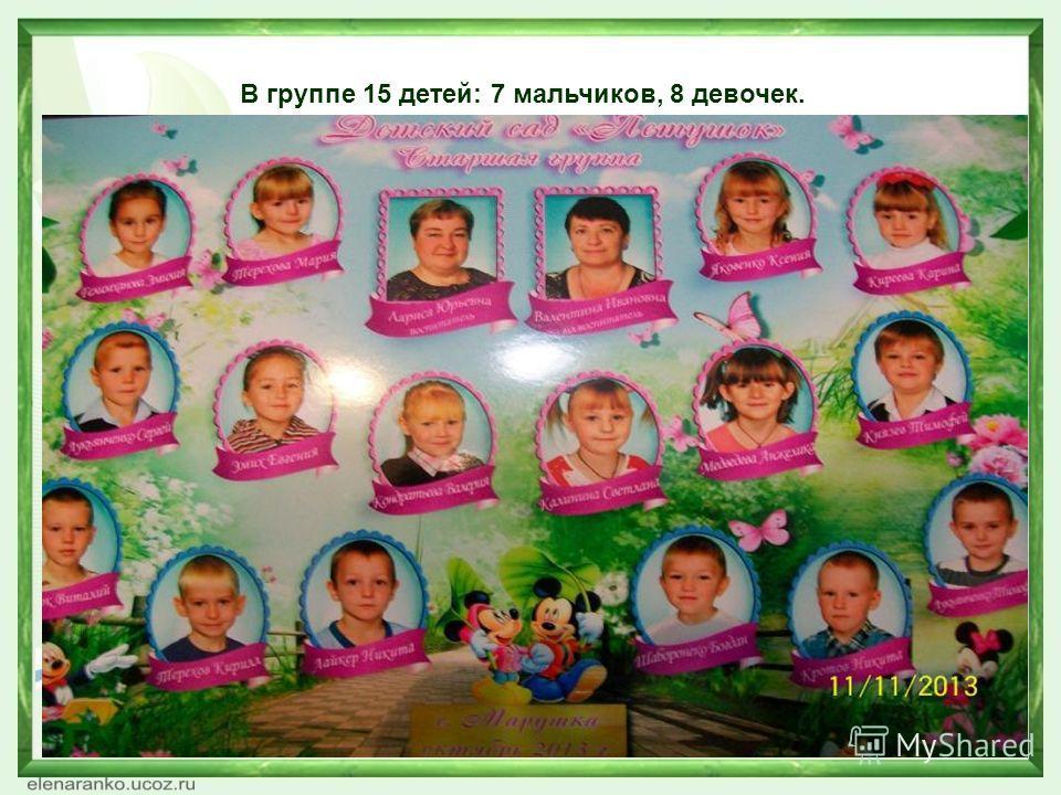 В группе 15 детей: 7 мальчиков, 8 девочек.