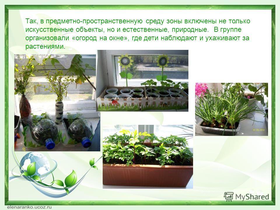 Так, в предметно-пространственную среду зоны включены не только искусственные объекты, но и естественные, природные. В группе организовали «огород на окне», где дети наблюдают и ухаживают за растениями.
