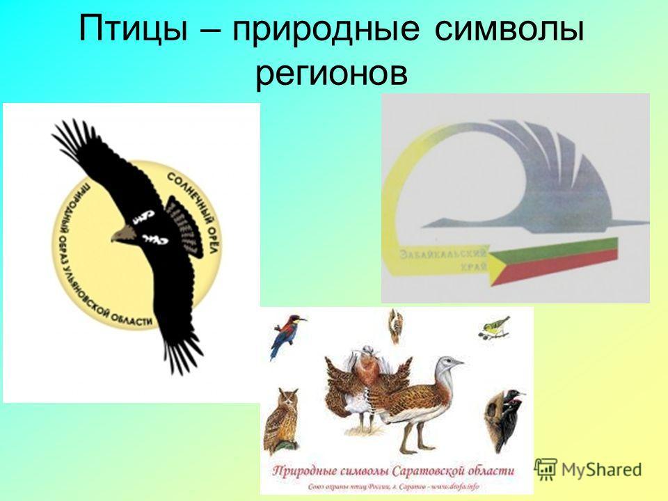 Птицы – природные символы регионов
