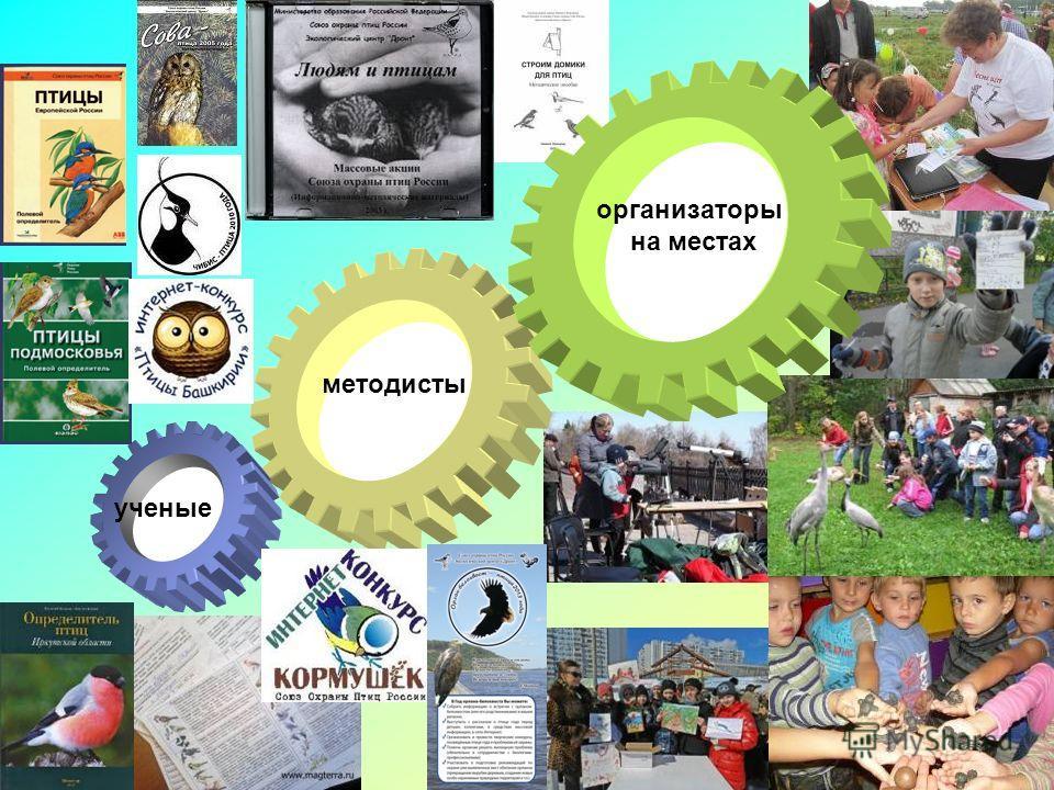 ученые методисты организаторы на местах