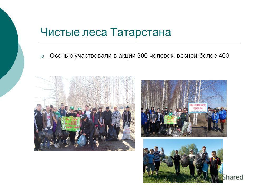 Чистые леса Татарстана Осенью участвовали в акции 300 человек, весной более 400