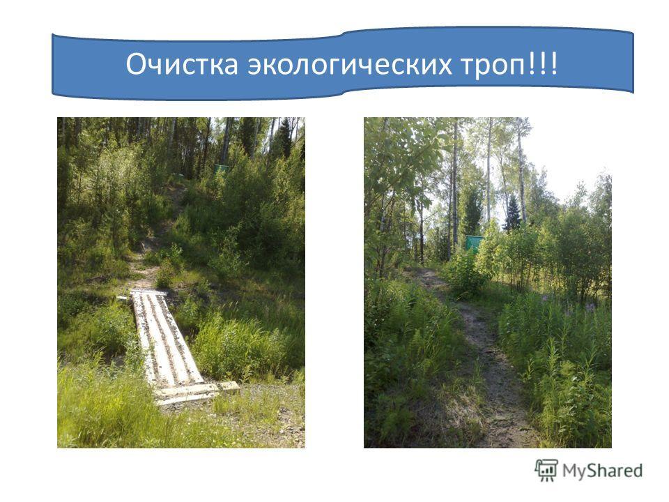 Очистка экологических троп!!!