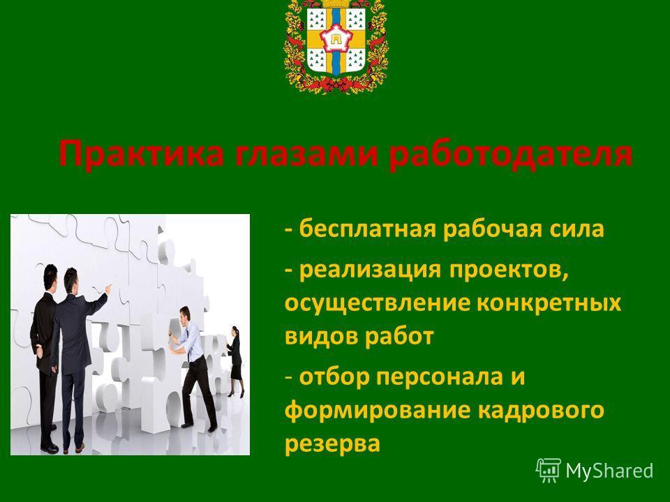 Практика глазами работодателя - бесплатная рабочая сила - реализация проектов, осуществление конкретных видов работ - отбор персонала и формирование кадрового резерва