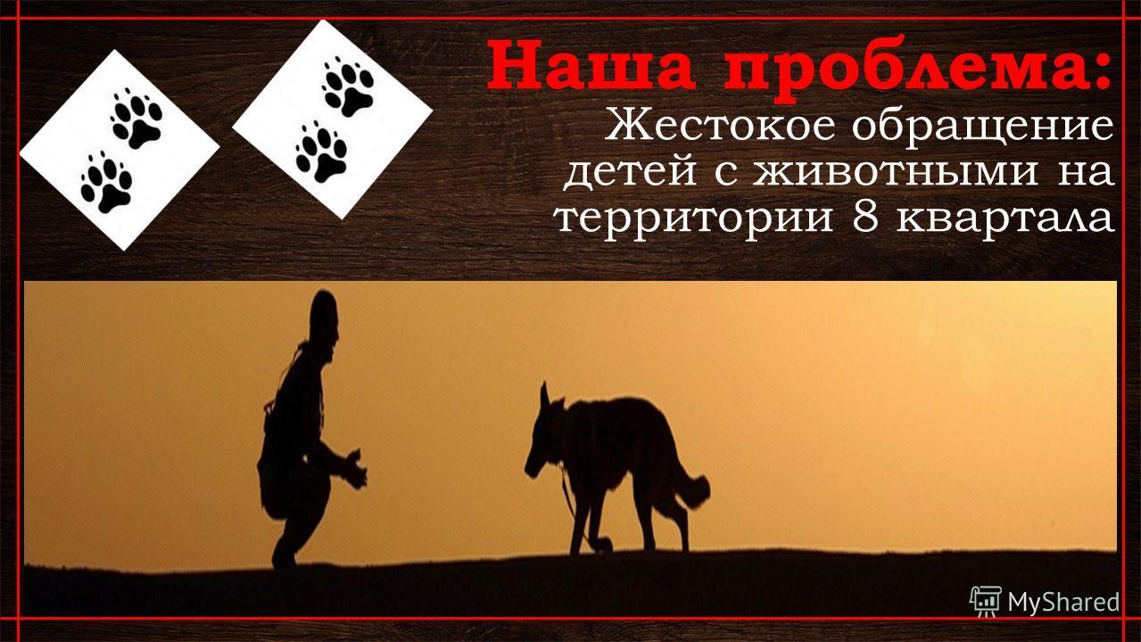 Наша проблема: Жестокое обращение детей с животными на территории 8 квартала