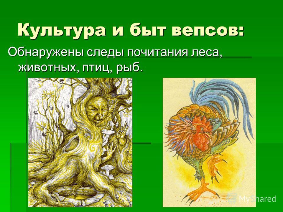Культура и быт вепсов: Обнаружены следы почитания леса, животных, птиц, рыб.