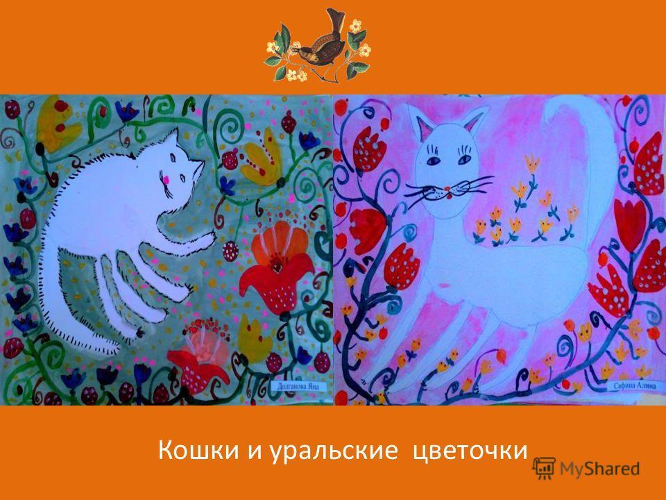Кошки и уральские цветочки