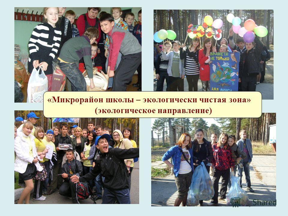 «Микрорайон школы – экологически чистая зона» (экологическое направление)