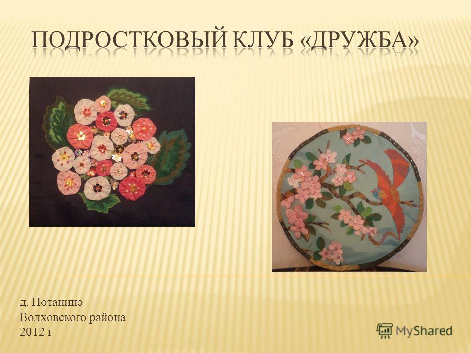 д. Потанино Волховского района 2012 г