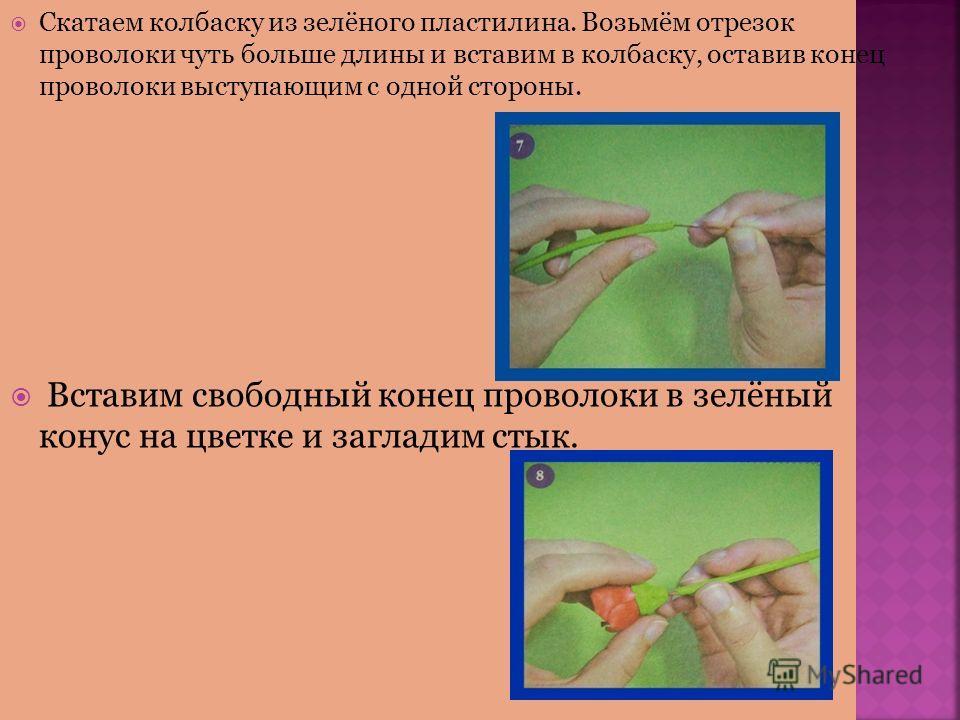 Скатаем колбаску из зелёного пластилина. Возьмём отрезок проволоки чуть больше длины и вставим в колбаску, оставив конец проволоки выступающим с одной стороны. Вставим своибодный конец проволоки в зелёный конус на цветке и загладим стык.