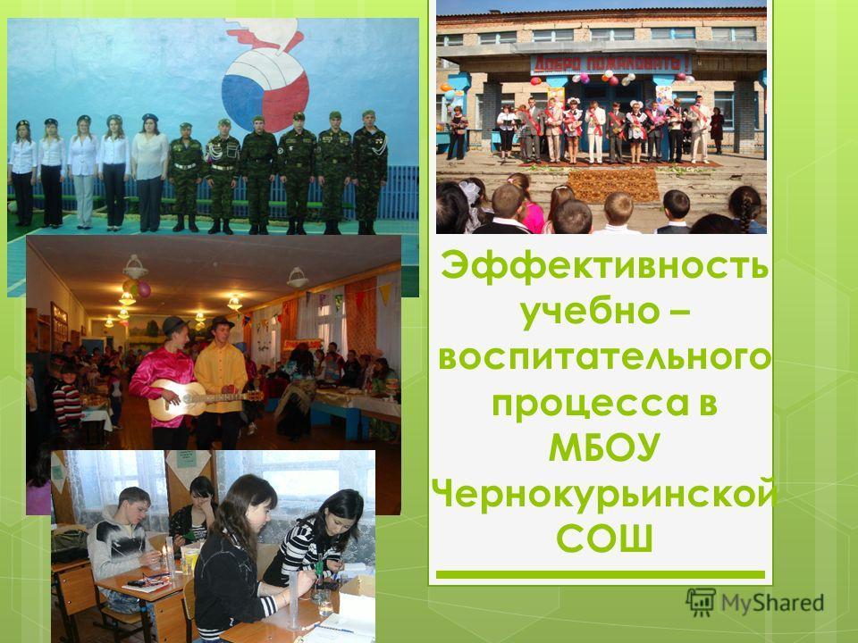 Эффективность учебно – воспитательного процесса в МБОУ Чернокурьинской СОШ