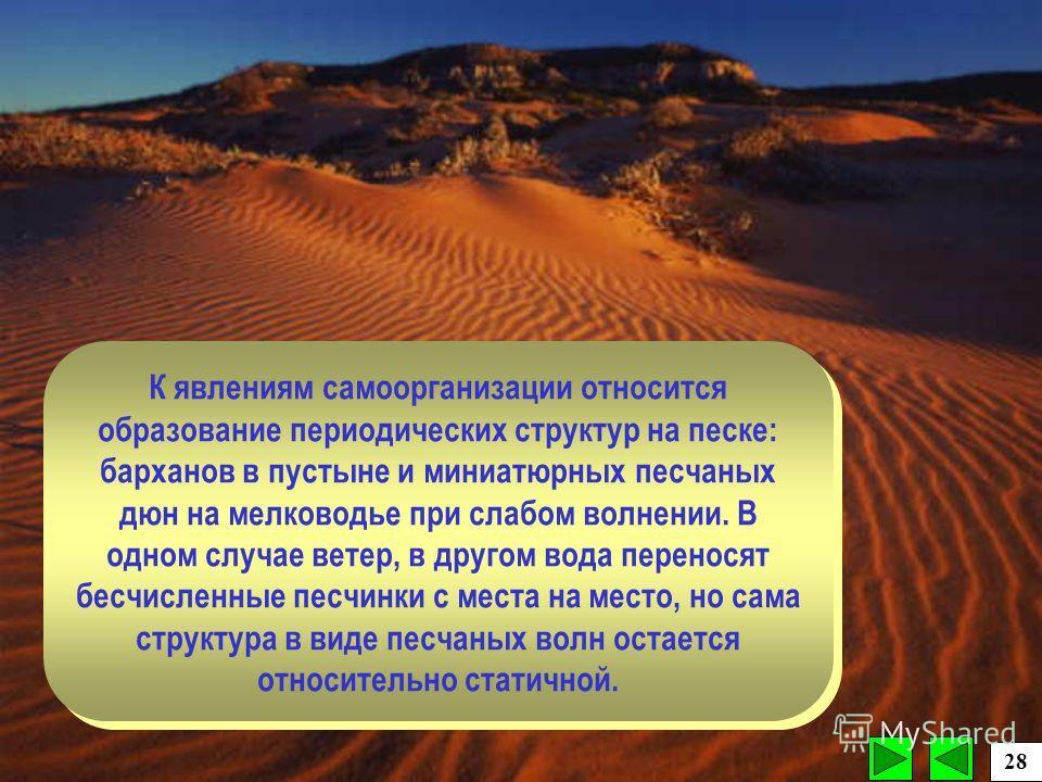 К явлениям самоорганизации относится образование периодических структур на песке: барханов в пустыне и миниатюрных песчаных дюн на мелководье при слабом волнении. В одном случае ветер, в другом вода переносят бесчисленные песчинки с места на место, н