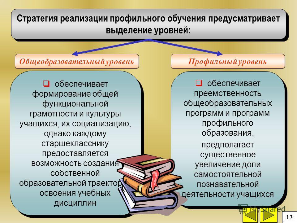 Стратегия реализации профильного обучения предусматривает выделение уровней: Общеобразовательный уровень Профильный уровень обеспечивает формирование общей функциональной грамотности и культуры учащихся, их социализацию, однако каждому старшеклассник