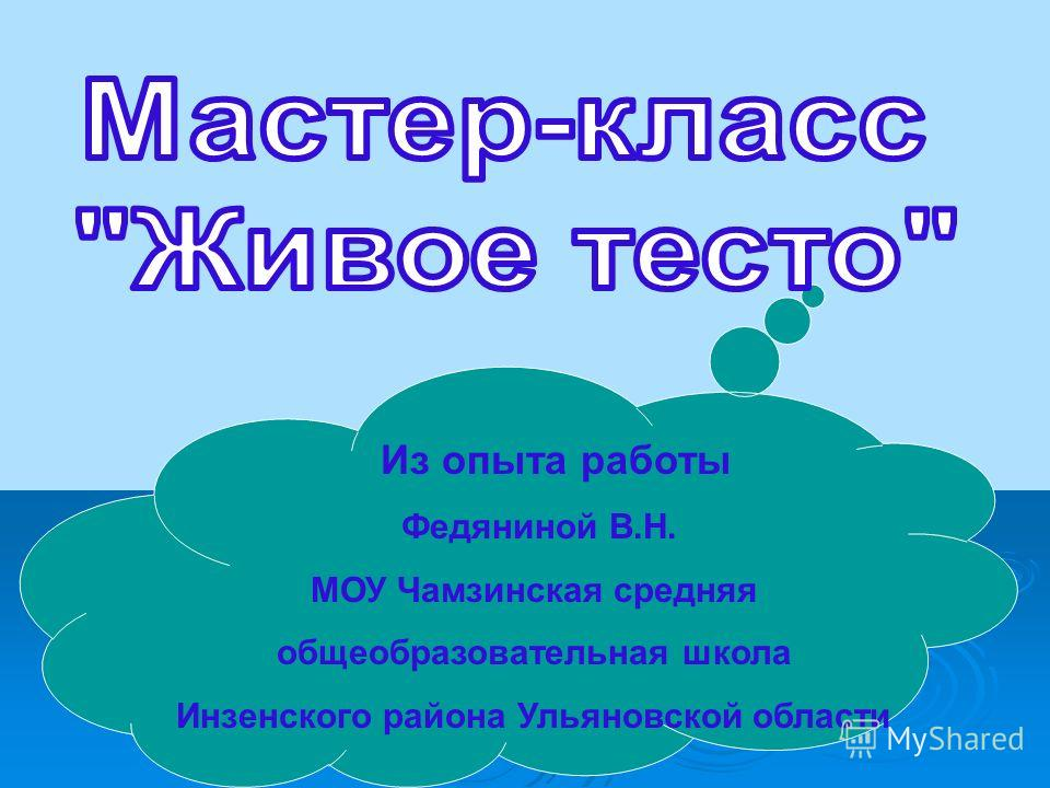 Из опыта работы Федяниной В.Н. МОУ Чамзинская средняя общеобразовательная школа Инзенского района Ульяновской области