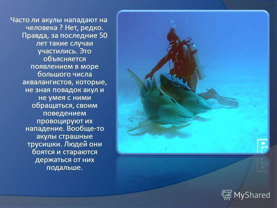 Часто ли акулы нападают на человека ? Нет, редко. Правда, за последние 50 лет такие случаи участились. Это объясняется появлением в море большого числа аквалангистов, которые, не зная повадок акул и не умея с ними обращаться, своим поведением провоци