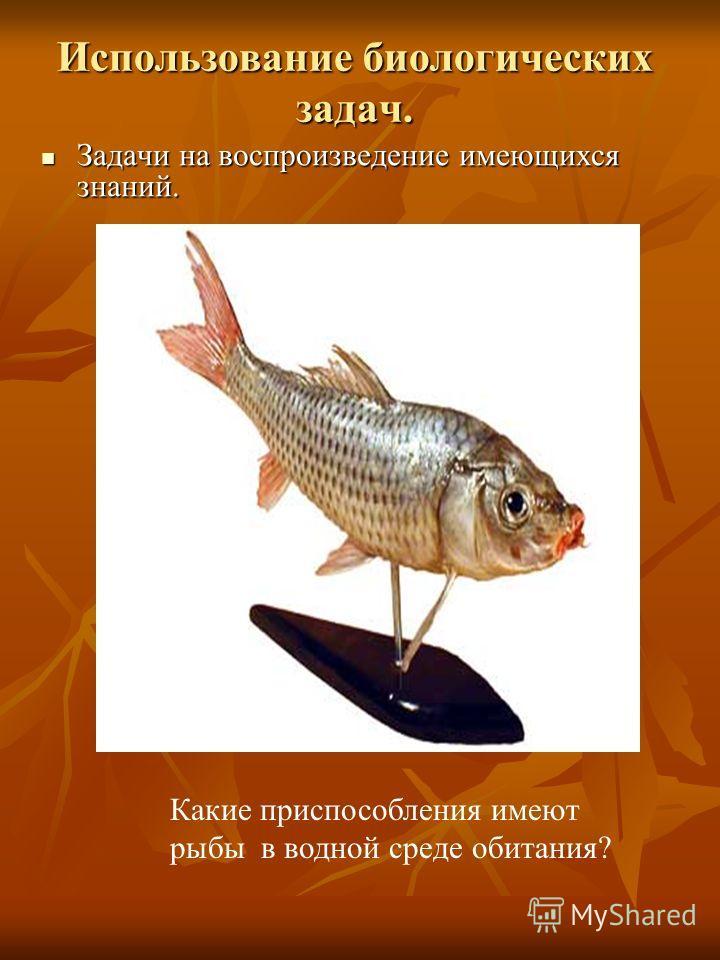 Использование биологических задач. Задачи на воспроизведение имеющихся знаний. Задачи на воспроизведение имеющихся знаний. Какие приспособления имеют рыбы в водной среде обитания?