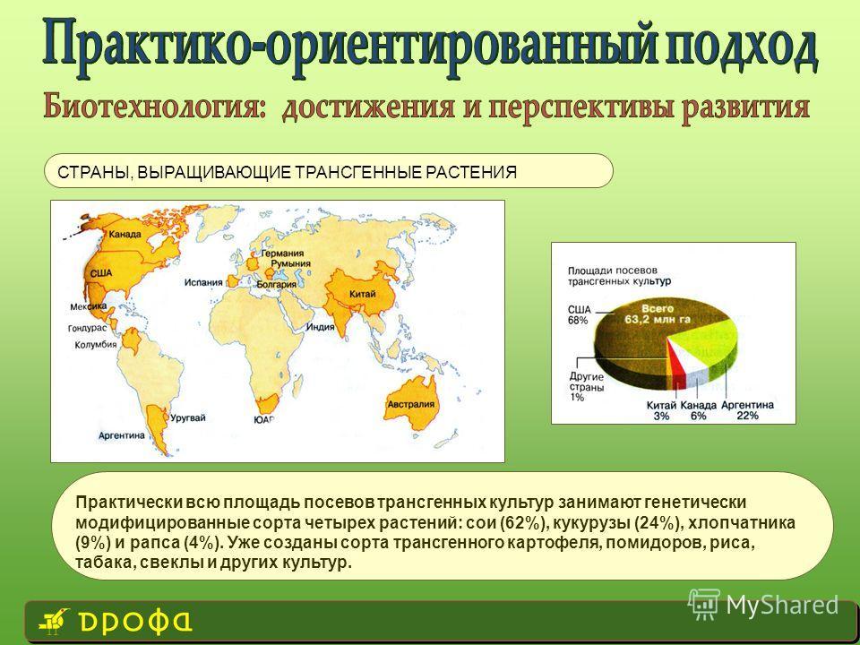 СТРАНЫ, ВЫРАЩИВАЮЩИЕ ТРАНСГЕННЫЕ РАСТЕНИЯ Практически всю площадь посевов трансгенных культур занимают генетически модифицированные сорта четырех растений: сои (62%), кукурузы (24%), хлопчатника (9%) и рапса (4%). Уже созданы сорта трансгенного карто