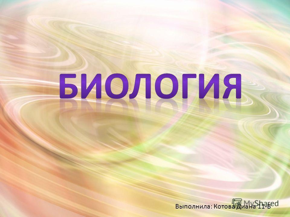 Выполнила: Котова Диана 11-В