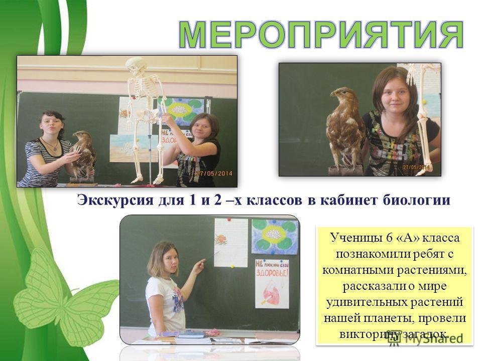 Free Powerpoint TemplatesPage 13 Ученицы 6 «А» класса познакомили ребят с комнатными растениями, рассказали о мире удивительных растений нашей планеты, провели викторину загадок. Экскурсия для 1 и 2 –х классов в кабинет биологии