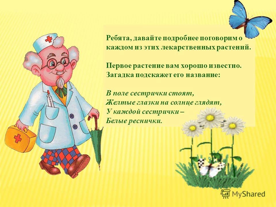 Ребята, давайте подробнее поговорим о каждом из этих лекарственных растений. Первое растение вам хорошо известно. Загадка подскажет его название: В поле сестрички стоят, Желтые глазки на солнце глядят, У каждой сестрички – Белые реснички.