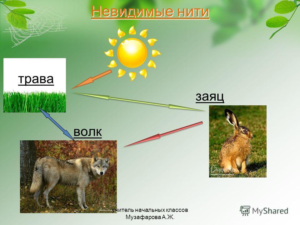 Невидимые нити трава заяц волк учитель начальных классов Музафарова А.Ж.