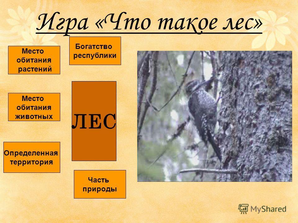 Игра «Что такое лес» ЛЕС Определенная территория Место обитания животных Место обитания растений Богатство республики Часть природы