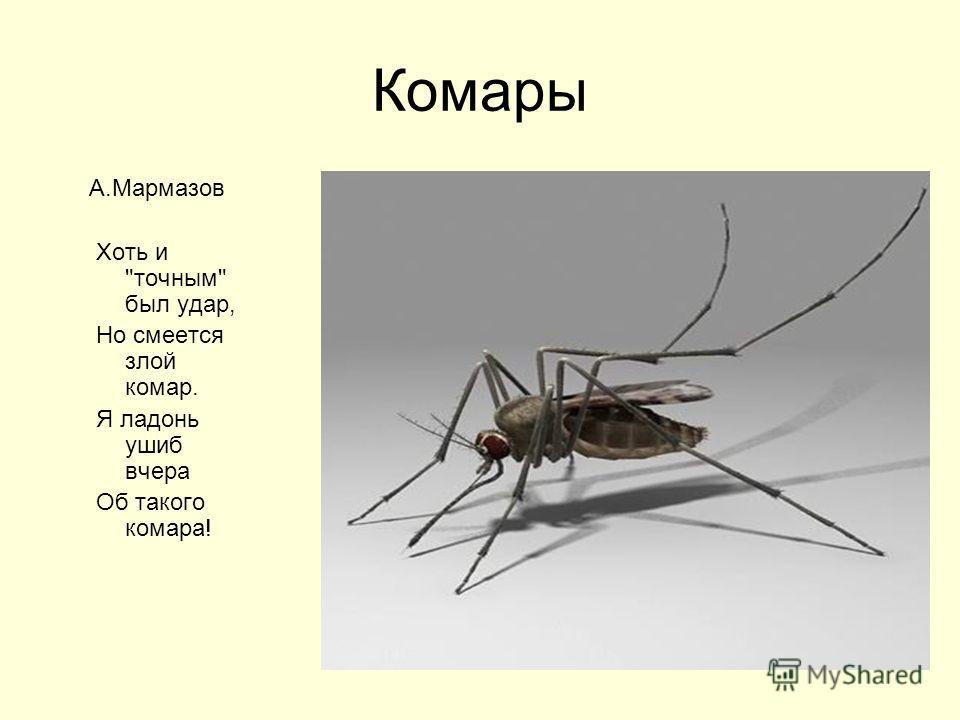 Комары А.Мармазов Хоть и точным был удар, Но смеется злой комар. Я ладонь ушиб вчера Об такого комара!