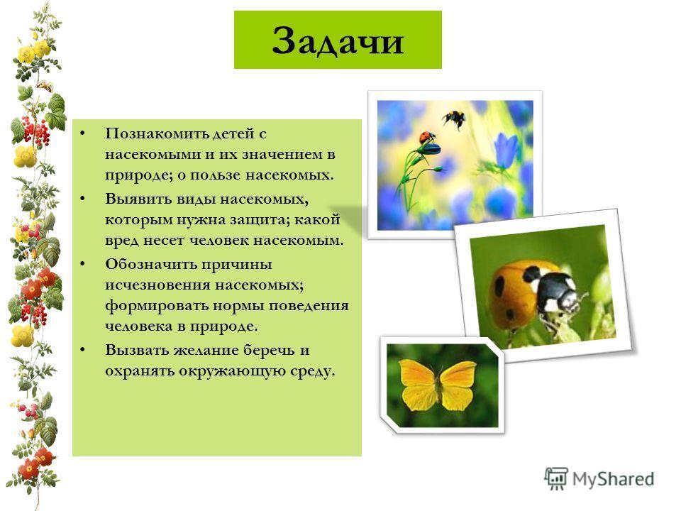 Задачи Познакомить детей с насекомыми и их значением в природе; о пользе насекомых. Выявить виды насекомых, которым нужна защита; какой вред несет человек насекомым. Обозначить причины исчезновения насекомых; формировать нормы поведения человека в пр