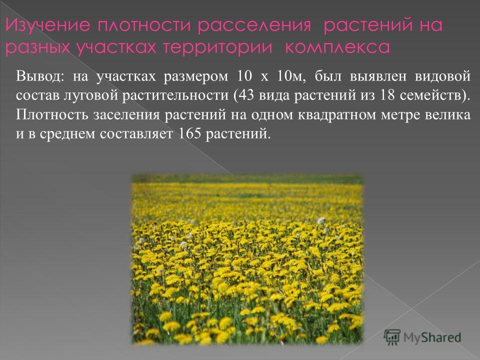 Вывод: на участках размером 10 х 10 м, был выявлен видовой состав луговой растительности (43 вида растений из 18 семейств). Плотность заселения растений на одном квадратном метре велика и в среднем составляет 165 растений. Изучение плотности расселен