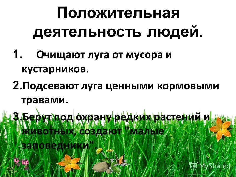 Положительная деятельность людей. 1. Очищают луга от мусора и кустарников. 2. Подсевают луга ценными кормовыми травами. 3. Берут под охрану редких растений и животных, создают малые заповедники.