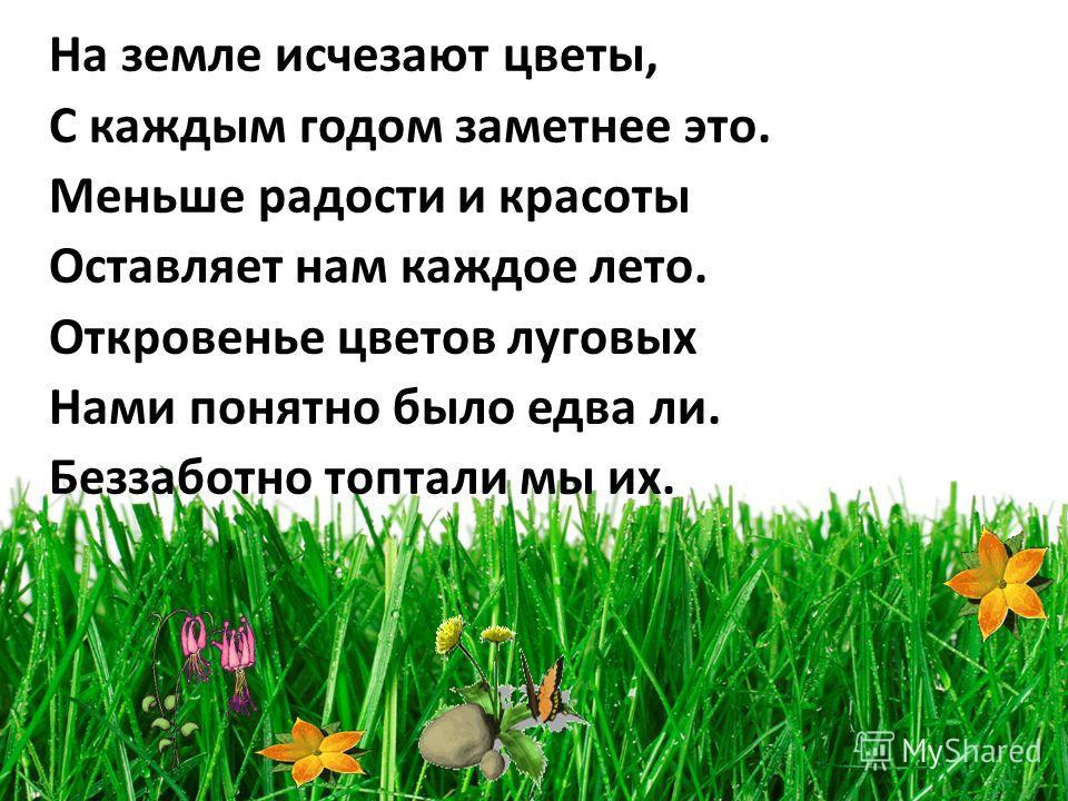 На земле исчезают цветы, С каждым годом заметнее это. Меньше радости и красоты Оставляет нам каждое лето. Откровенье цветов луговых Нами понятно было едва ли. Беззаботно топтали мы их.