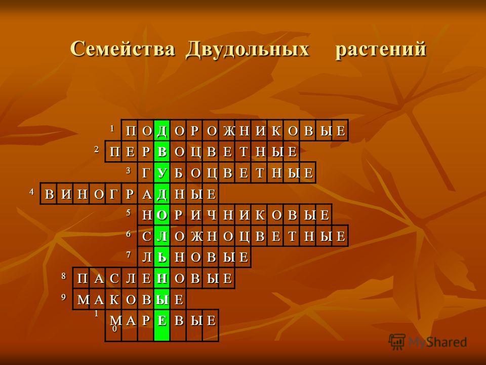 1ПОДОРОЖНИКОВЫЕ 2ПЕРВОЦВЕТНЫЕ 3ГУБОЦВЕТНЫЕ 4ВИНОГРАДНЫЕ 5НОРИЧНИКОВЫЕ 6СЛОЖНОЦВЕТНЫЕ 7ЛЬНОВЫЕ 8ПАСЛЕНОВЫЕ 9МАКОВЫЕ 10101010МАРЕВЫЕ Семейства Двудольных растений Семейства Двудольных растений