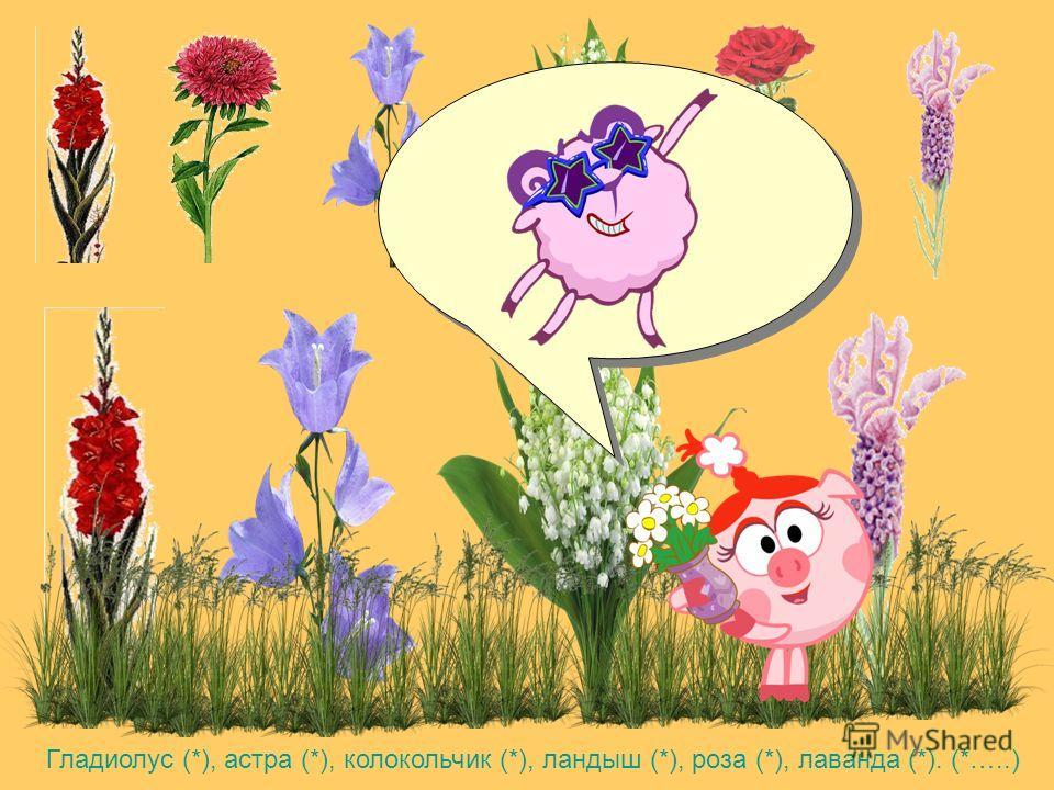 Тут к Лосяшу пришел Бараш. Он захотел посадить для Нюши цветы на клумбу. Но хочет чтобы там росли только растения в названии которых есть звук Л. Поможем Барашу? (*)