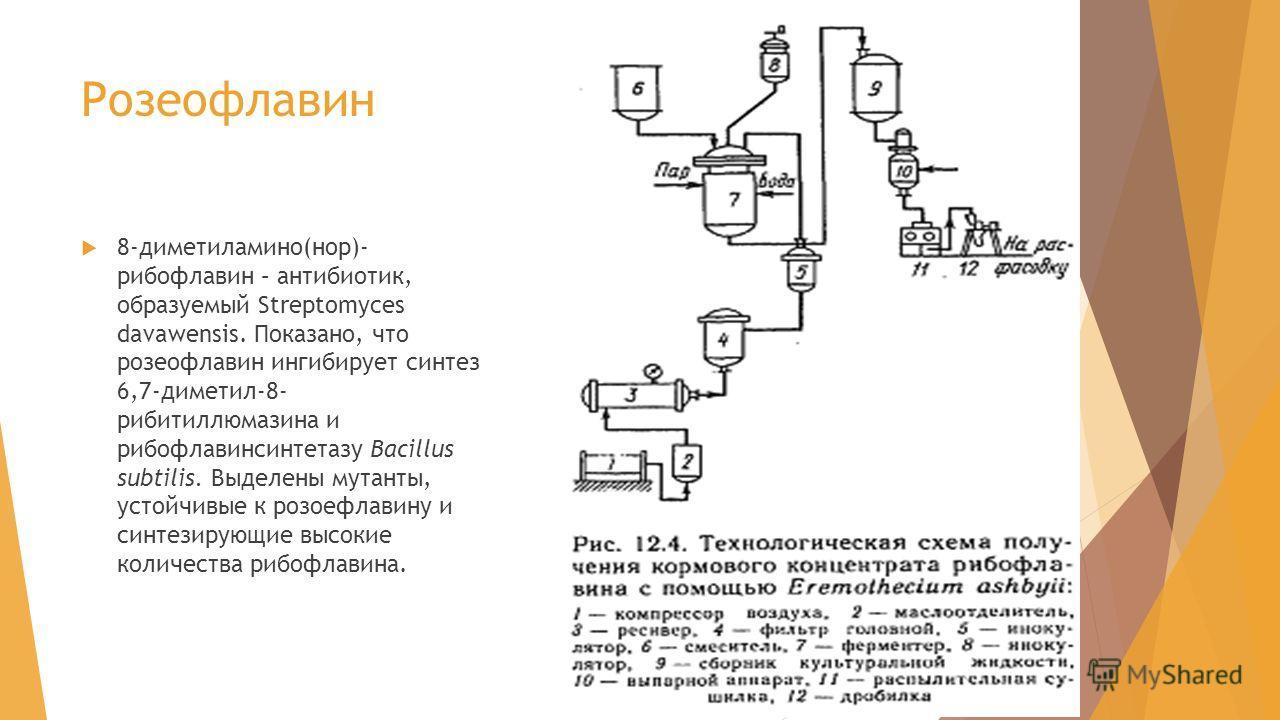 Розеофлавин 8-диметиламино(нор)- рибофлавин – антибиотик, образуемый Streptomyces davawensis. Показано, что розеофлавин ингибирует синтез 6,7-диметил-8- рибитиллюмазина и рибофлавинсинтетазу Bacillus subtilis. Выделены мутанты, устойчивые к розоефлав