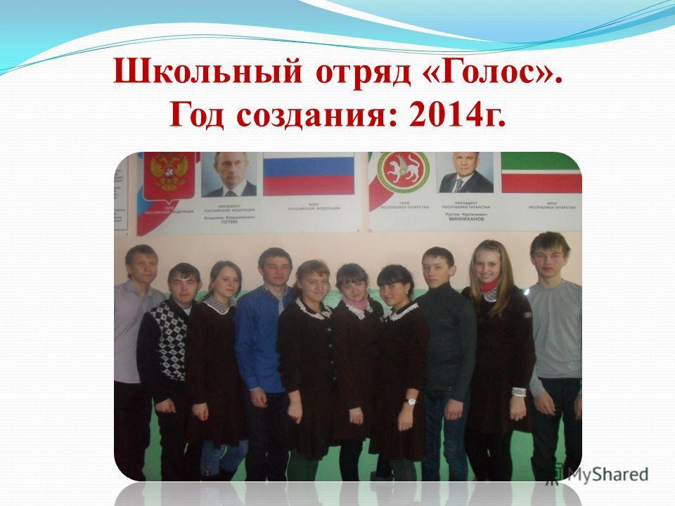 Школьный отряд «Голос». Год создания: 2014 г.