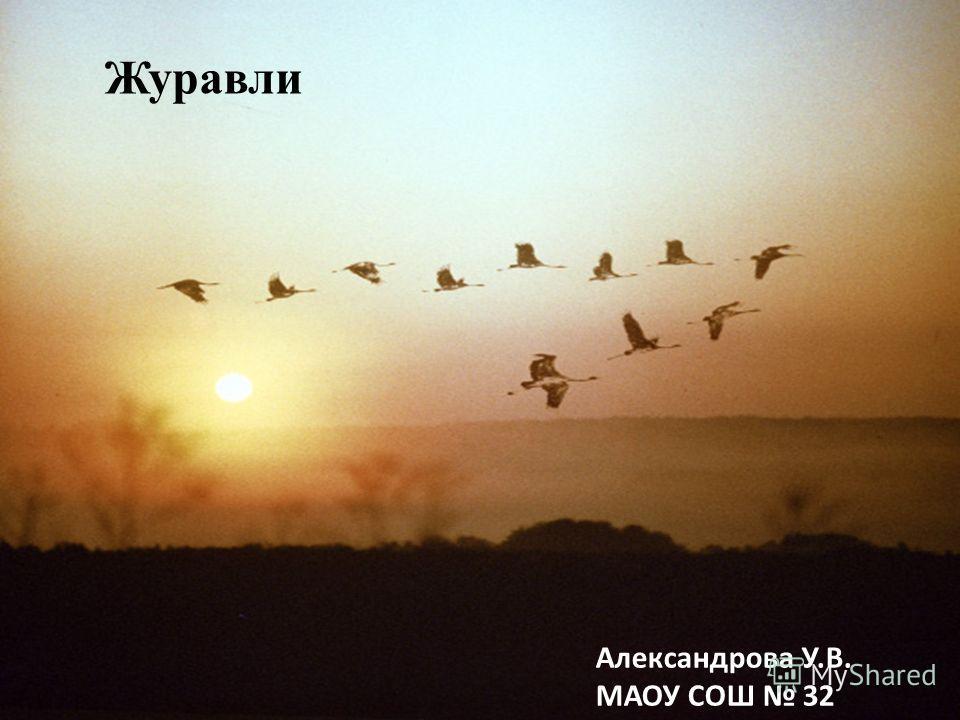 Журавли Александрова У.В. МАОУ СОШ 32