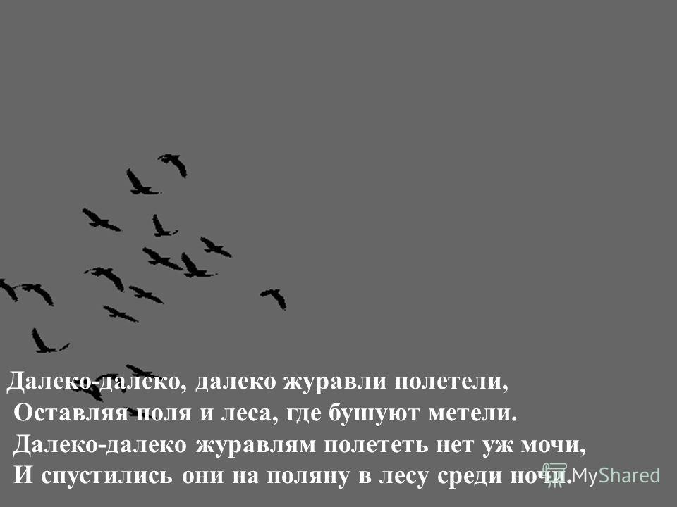 Далеко-далеко, далеко журавли полетели, Оставляя поля и леса, где бушуют метели. Далеко-далеко журавлям полететь нет уж мочи, И спустились они на поляну в лесу среди ночи.