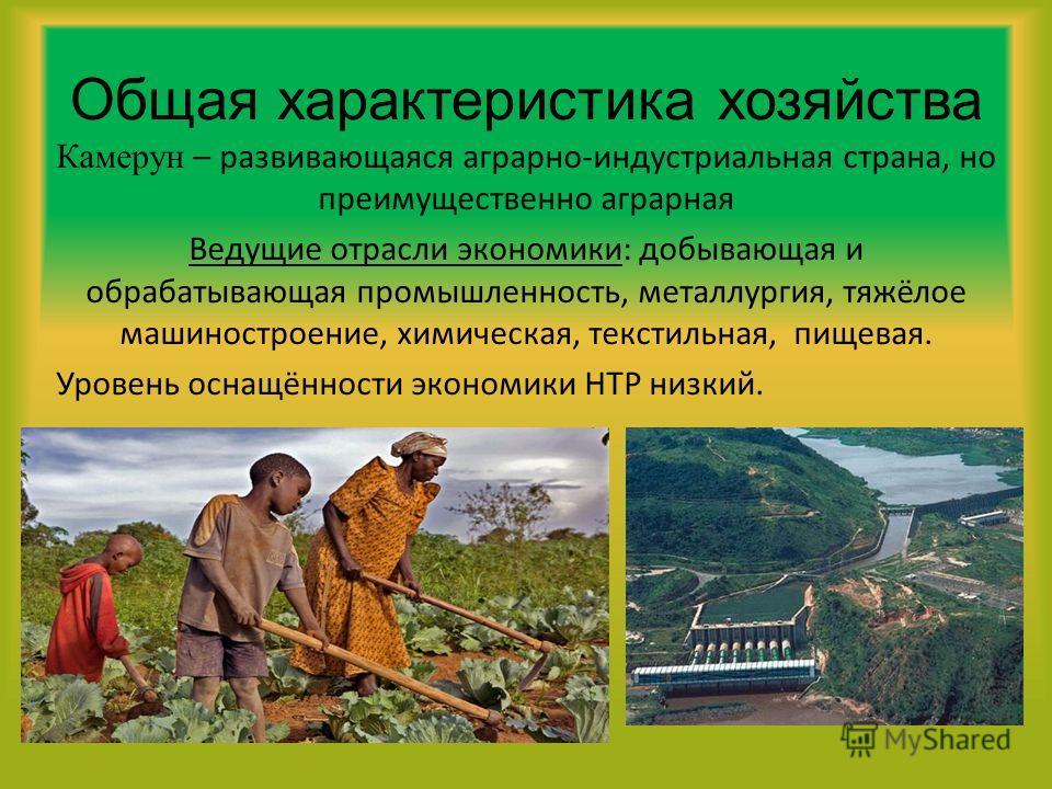 Общая характеристика хозяйства Камерун – развивающаяся аграрно-индустриальная страна, но преимущественно аграрная Ведущие отрасли экономики: добывающая и обрабатывающая промышленность, металлургия, тяжёлое машиностроение, химическая, текстильная, пищ
