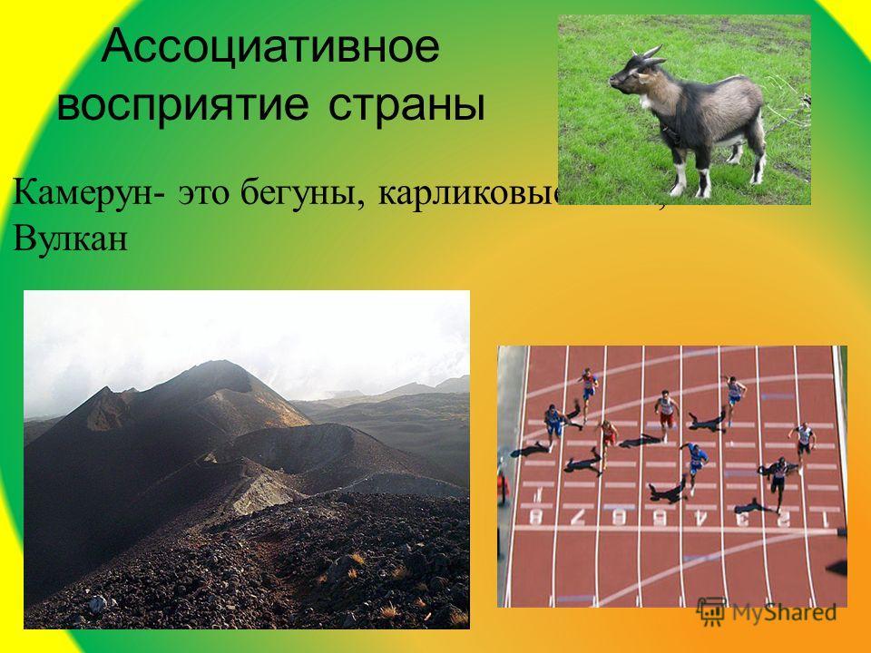 Ассоциативное восприятие страны Камерун- это бегуны, карликовые козы, Вулкан