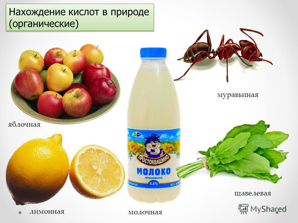 Нахождение кислот в природе (органические) яблочная лимонная муравьиная молочная щавелевая