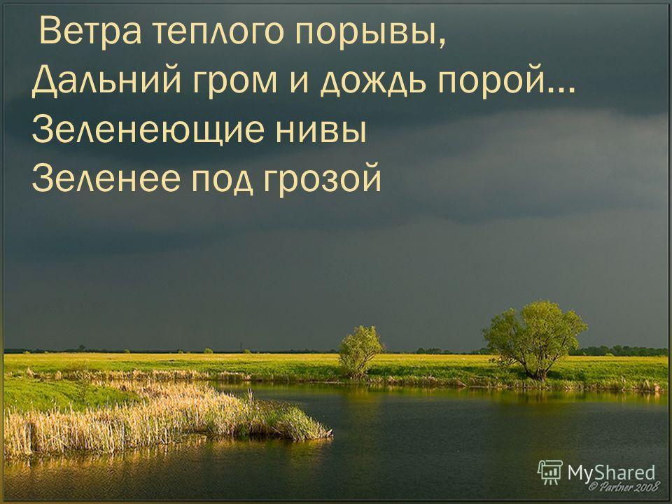 Ветра теплого порывы, Дальний гром и дождь порой... Зеленеющие нивы Зеленее под грозой