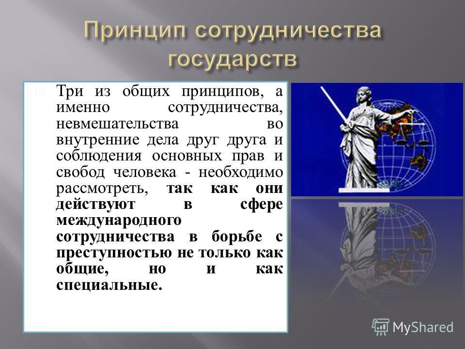 Три из общих принципов, а именно сотрудничества, невмешательства во внутренние дела друг друга и соблюдения основных прав и свобод человека - необходимо рассмотреть, так как они действуют в сфере международного сотрудничества в борьбе с преступностью