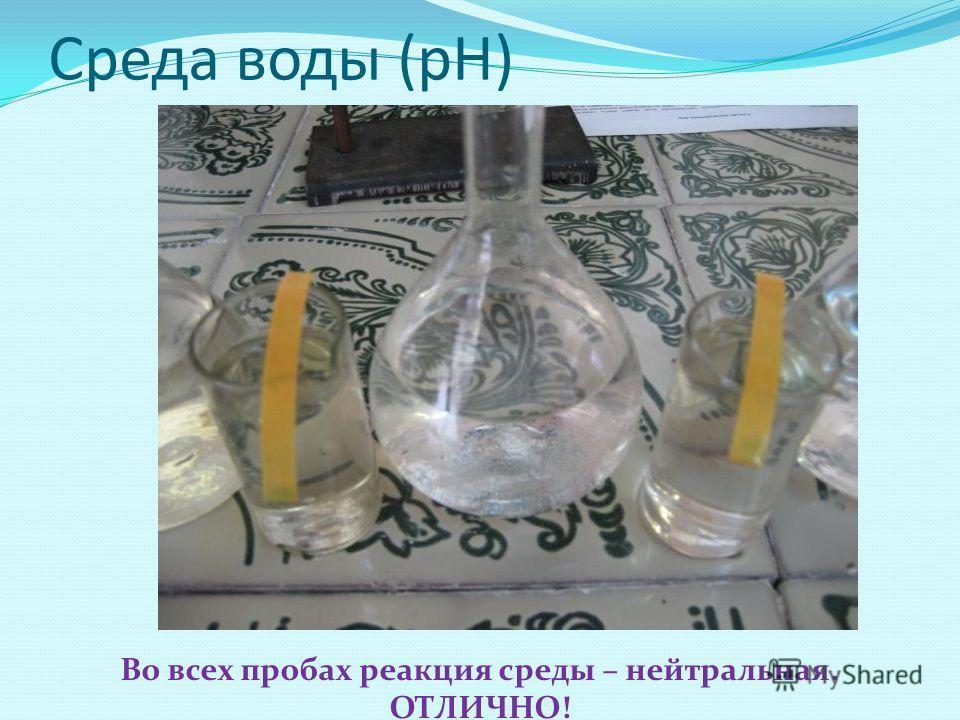 Среда воды (рН) Во всех пробах реакция среды – нейтральная. ОТЛИЧНО!