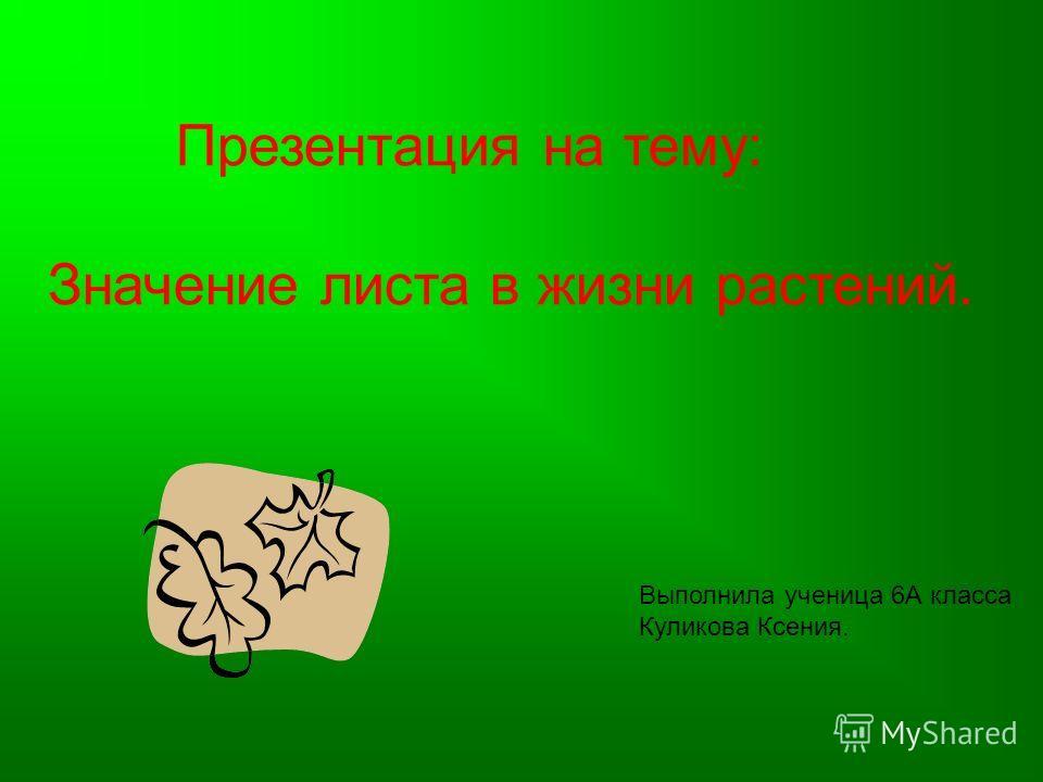 Презентация на тему: Значение листа в жизни растений. Выполнила ученица 6А класса Куликова Ксения.