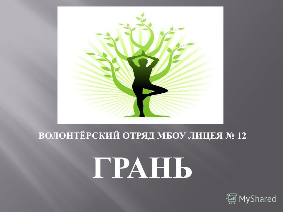 ВОЛОНТЁРСКИЙ ОТРЯД МБОУ ЛИЦЕЯ 12 ГРАНЬ