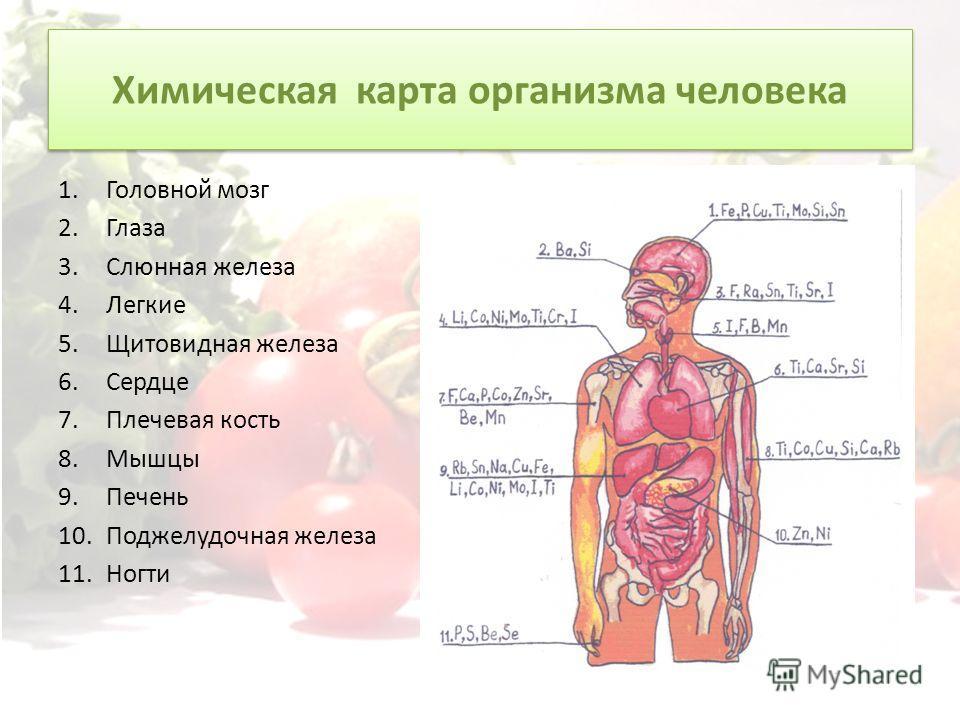 Химическая карта организма человека 1. Головной мозг 2. Глаза 3. Слюнная железа 4. Легкие 5. Щитовидная железа 6. Сердце 7. Плечевая кость 8. Мышцы 9. Печень 10. Поджелудочная железа 11.Ногти