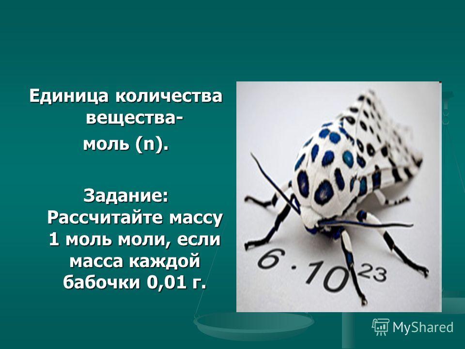 Единица количества вещества- моль (n). Задание: Рассчитайте массу 1 моль моли, если масса каждой бабочки 0,01 г.
