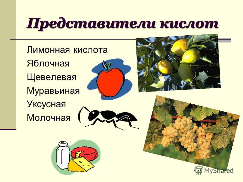 Представители кислот Лимонная кислота Яблочная Щевелевая Муравьиная Уксусная Молочная