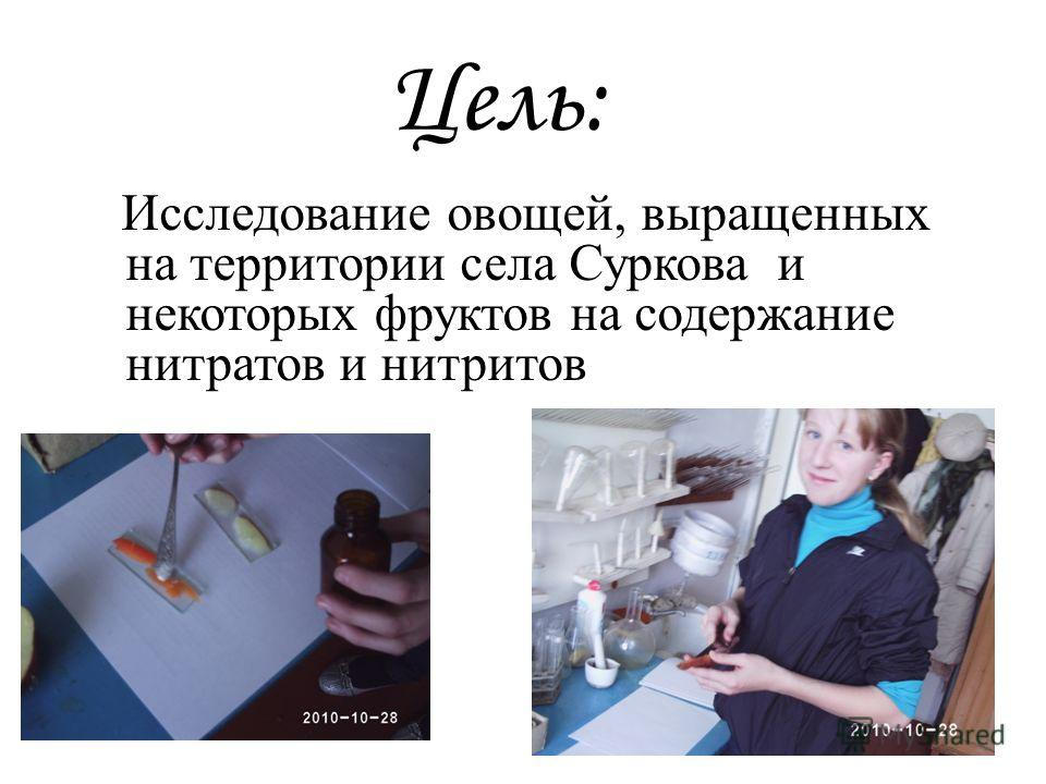 Цель: Исследование овощей, выращенных на территории села Суркова и некоторых фруктов на содержание нитратов и нитритов
