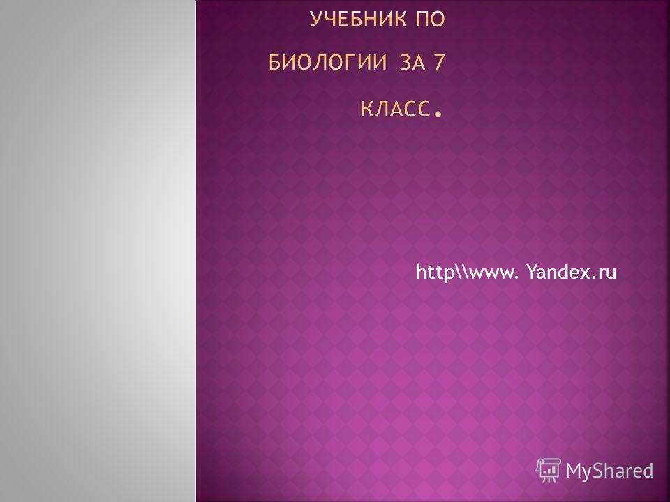 http\\www. Yandex.ru