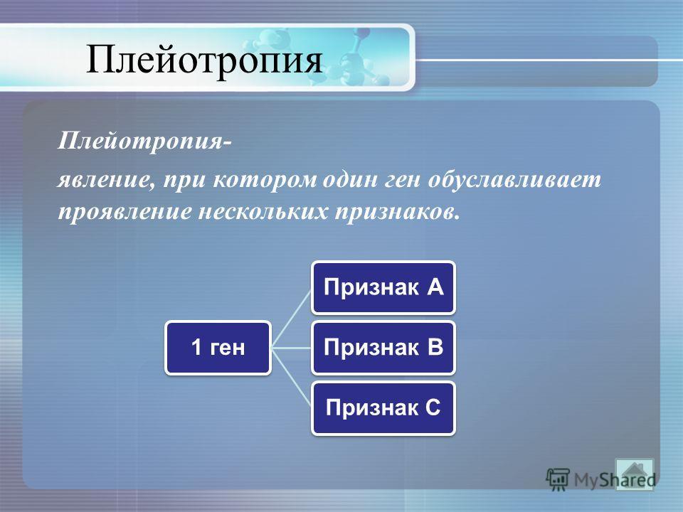 Плейотропия Плейотропия- явление, при котором один ген обуславливает проявление нескольких признаков. 1 ген Признак АПризнак В Признак С
